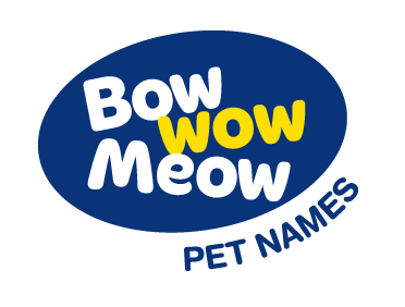 Top 20 Pet Names - The Most Popular Name | Bow Wow